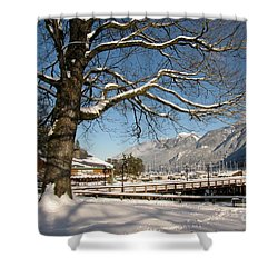 Winter Horseshoe Shower Curtain