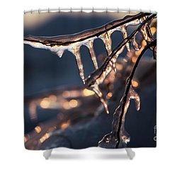 Winter Ice Shower Curtain