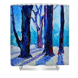 Winter Impression Shower Curtain by Ana Maria Edulescu