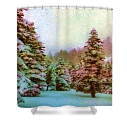 Winter Impressions Shower Curtain