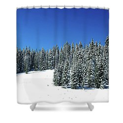Winter In Colorado  Shower Curtain