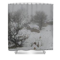 Winter In Israel Shower Curtain by Annemeet Hasidi- van der Leij