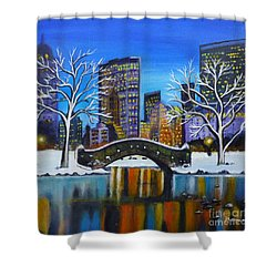 Winter In New York- Night Landscape Shower Curtain
