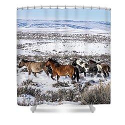 Winter In Sand Wash Basin - Wild Mustangs On The Run Shower Curtain