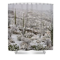 Winter In The Desert Shower Curtain by Sandra Bronstein