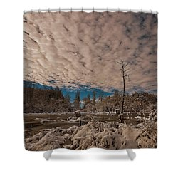 Winter In The Wetlands Shower Curtain