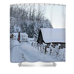 Winter In Virginia Shower Curtain