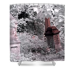 Winter Infrared Cemetery Shower Curtain