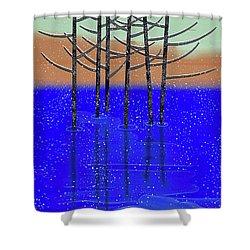 Winter Lake Shower Curtain