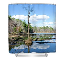 Shower Curtain featuring the photograph Winter Lake View by George Randy Bass