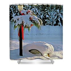 Winter Lamp Post In The Snow With Christmas Bough Shower Curtain
