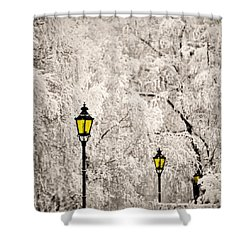 Winter Lanterns Shower Curtain
