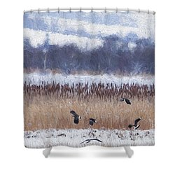 Winter Lapwings Shower Curtain by Liz Leyden