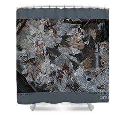 Shower Curtain featuring the photograph Winter Leaf Abstract-i by Patricia Overmoyer