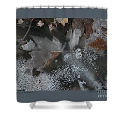 Shower Curtain featuring the photograph Winter Leaf Abstract-ii by Patricia Overmoyer
