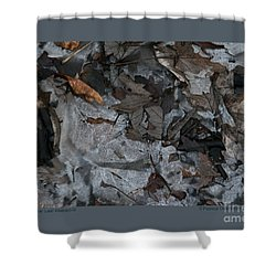 Shower Curtain featuring the photograph Winter Leaf Abstract-iii by Patricia Overmoyer