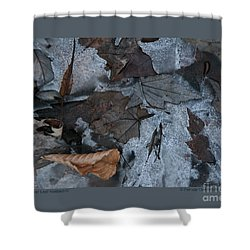 Shower Curtain featuring the photograph Winter Leaf Abstract-iv by Patricia Overmoyer