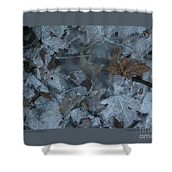 Winter Leaf Abstract-v Shower Curtain