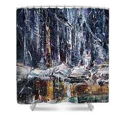 Winter Light Iv Shower Curtain