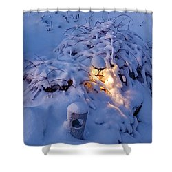 Winter Light Shower Curtain