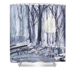 Shower Curtain featuring the painting Winter Light by Robin Maria Pedrero