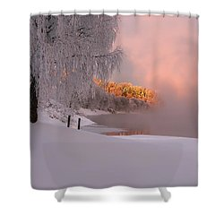 Winter Light Shower Curtain by Rose-Maries Pictures