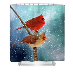 Winter Love Shower Curtain