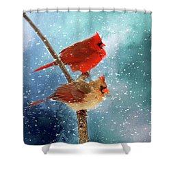Winter Love Shower Curtain by Darren Fisher