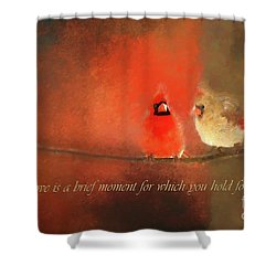 Shower Curtain featuring the photograph Winter Love2 by Darren Fisher