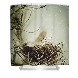 Shower Curtain featuring the photograph Winter Lullaby by Amy Weiss