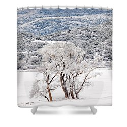 Winter Magic Shower Curtain