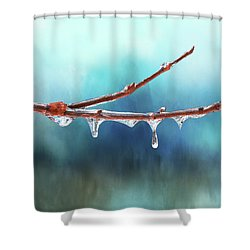 Winter Magic - Gleaming Ice On Viburnum Branches Shower Curtain
