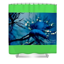 Shower Curtain featuring the photograph Winter Magic by Susanne Van Hulst