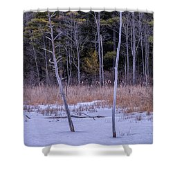 Winter Marsh And Trees Shower Curtain