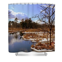 Winter Marsh Shower Curtain