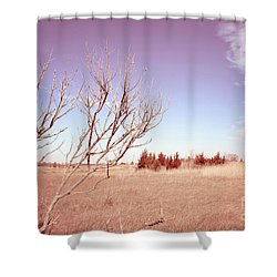 Shower Curtain featuring the photograph Winter Marshlands by Colleen Kammerer