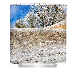 Winter Shower Curtain by Meirion Matthias