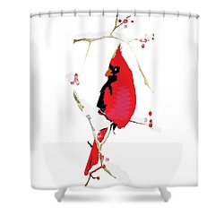 Shower Curtain featuring the mixed media Winter Messenger by Larry Talley