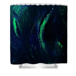 Winter Northern Lights  Shower Curtain