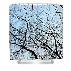 Shower Curtain featuring the photograph Winter Of Life by Kay Gilley