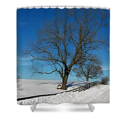 Winter On A Country Road Shower Curtain