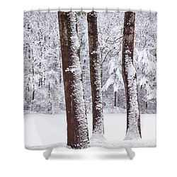 Winter On Paradise Pond Shower Curtain