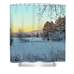 Winter On The Tree Farm Shower Curtain