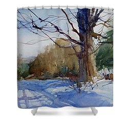 Winter On White Road Shower Curtain