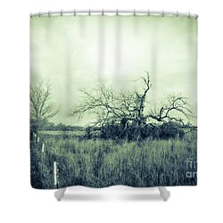 Winter Pecan Shower Curtain