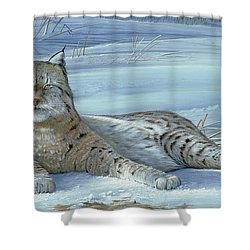 Winter Prince Shower Curtain