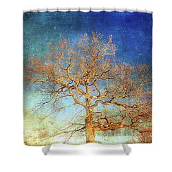 Winter Promise Shower Curtain