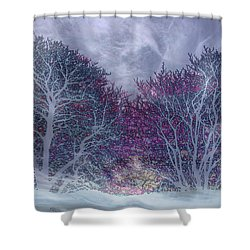 Shower Curtain featuring the photograph Winter Purple by Nareeta Martin