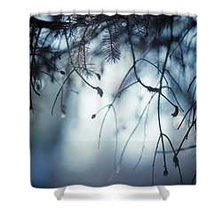 Shower Curtain featuring the photograph Winter by Rebecca Cozart