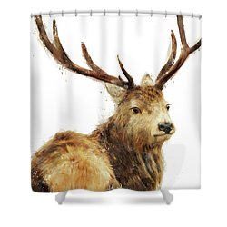 Winter Red Deer Shower Curtain by Amy Hamilton